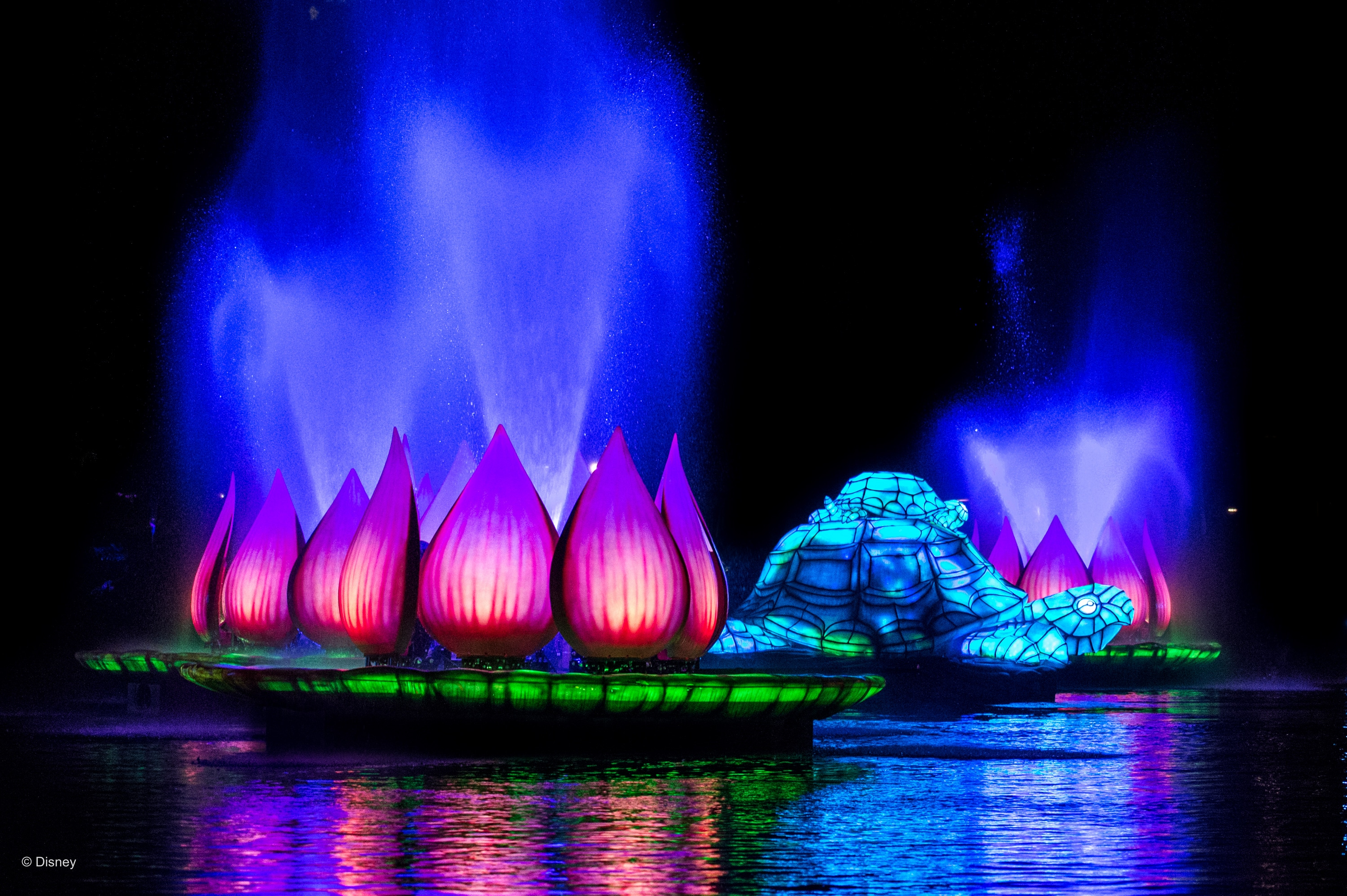 Rivers of Light show at Disney's Animal Kingdom