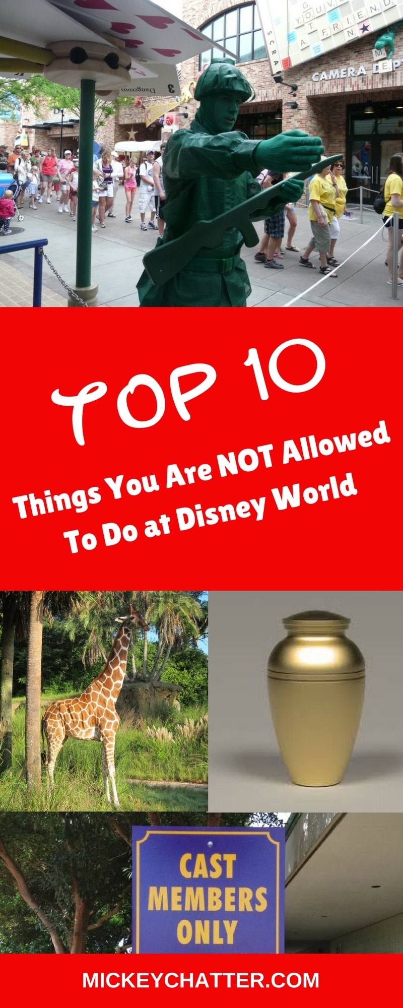 Learn about the top 10 things not to do at Disney World!