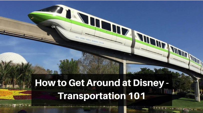 Everything you need to know about Disney transportation
