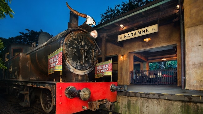 Wildlife Express Train at Animal Kingdom