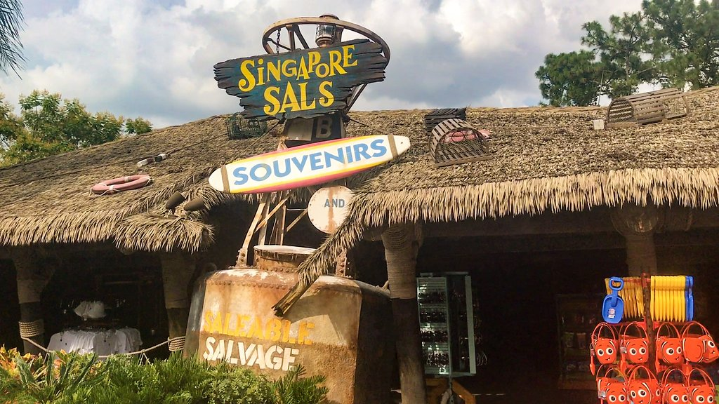 Singapore Sals Typhoon Lagoon and Blizzard Beach