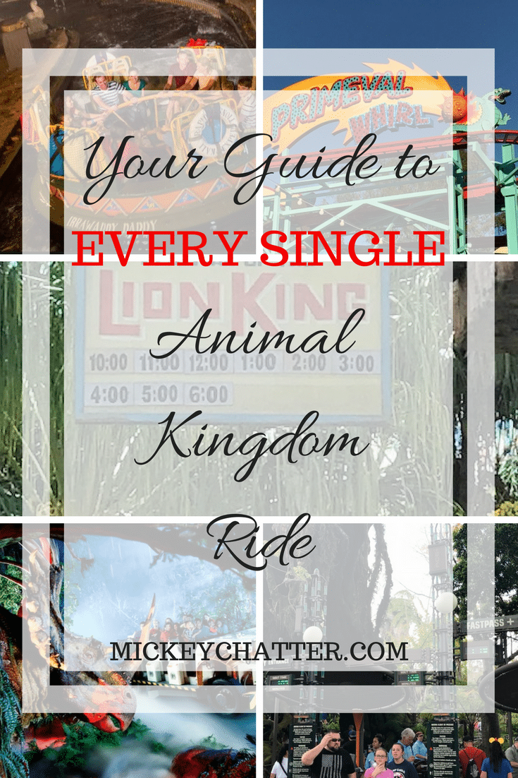 Your guide to EVERY SINGLE Animal Kingdom ride