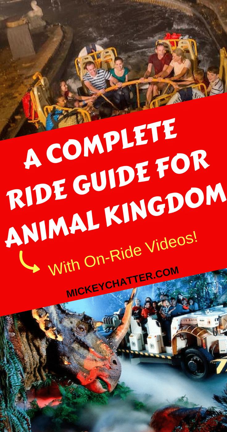 A complete guide for every ride at Animal Kingdom, with on-ride videos! #disneyrides #animalkingdom #disneyworld #disneyvacation #disneyplanning
