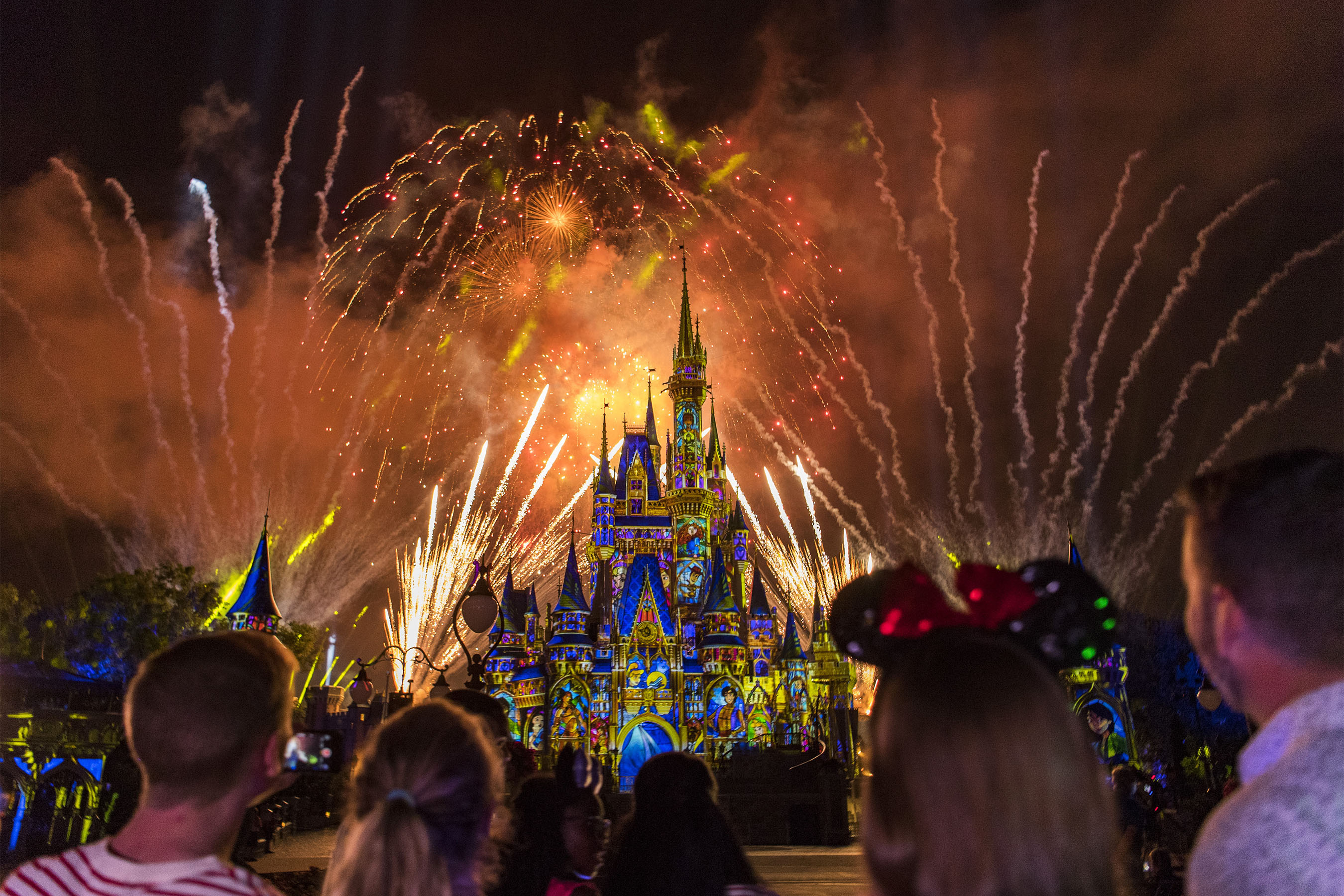 Happily Ever After at Disney World's Magic Kingdom #disneyworld #happilyeverafter #magickingdom #disneyshows #disneyfireworks #disneytrip #disneyvacation #disneyentertainment